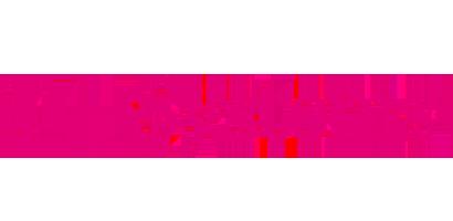 partner_tsystemlogo